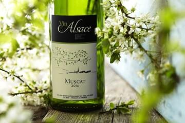 Godt nyt fra Alsace