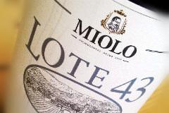 Miolo Lote 43 vandret