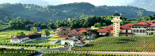 Miolo Winery